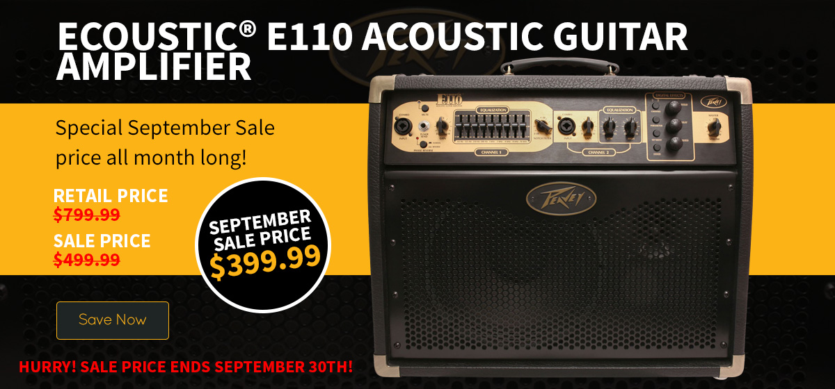 Ecoustic® E110 Acoustic Guitar Amplifier with Footcontroller